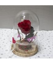 Rosa Eterna Love