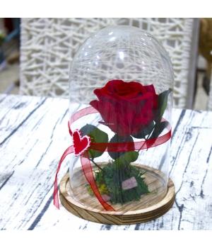 """Rosa Roja Eterna """"Bella y Bestia"""""""