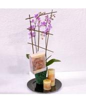 Conjunto orquidea con aromas