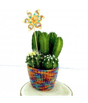 Detalle Cactus